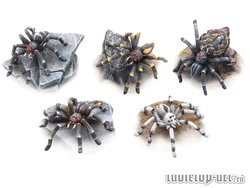 Giant Spiders Set (5)