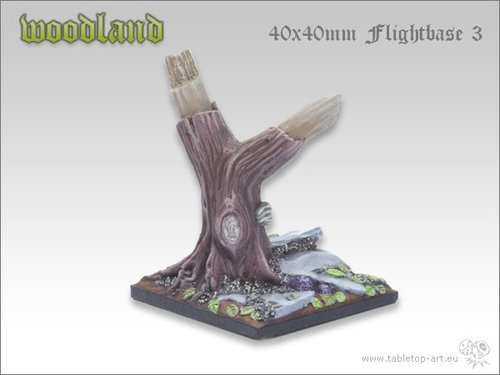 Woodland | 40x40mm Flightbase 3