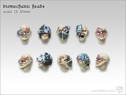 Biomechanic Heads